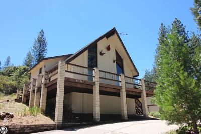 Groveland Single Family Home For Sale: 11300 Merrell Road