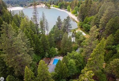 Twain Harte Single Family Home For Sale: 22426 Mono Drive