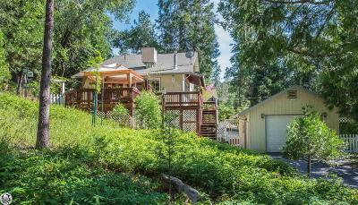 Sonora Single Family Home For Sale: 21457 American River Dr