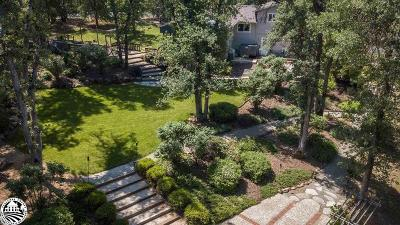 Sonora Single Family Home For Sale: 14772 Lakeside Drive