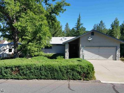 Tuolumne County Single Family Home For Sale: 20873 Big Foot Cir