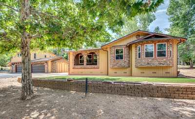 Groveland Single Family Home For Sale: 19485 Ferretti Rd