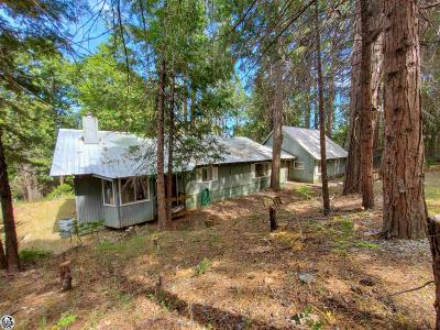 Twain Harte Single Family Home For Sale: 23359 Coffill Road