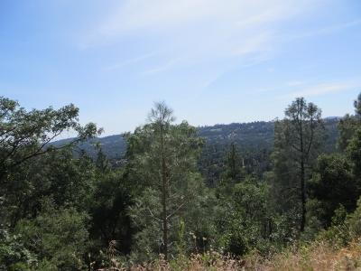 Tuolumne Residential Lots & Land For Sale: Lot 206 Canyonview Dr