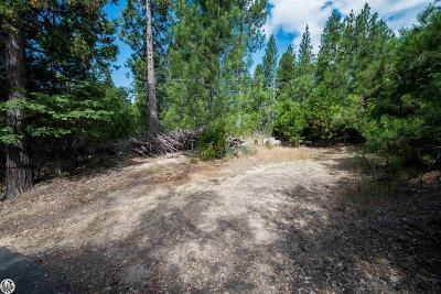 Twain Harte Residential Lots & Land For Sale: Lot 4 S Fork