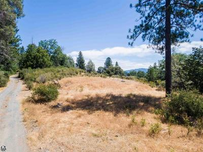 Twain Harte Residential Lots & Land For Sale: 18000 Freedom Way