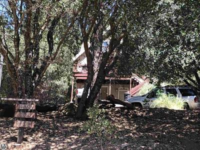 Groveland Single Family Home For Sale: 20806 McKinley Way