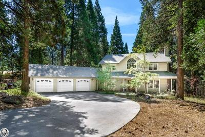 Twain Harte Single Family Home For Sale: 20073 Forest Vista Road