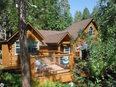 Twain Harte Single Family Home For Sale: 22946 Placer Drive