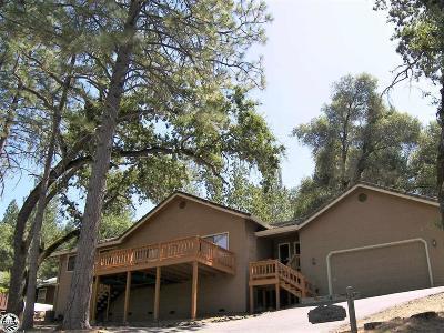 Groveland Single Family Home For Sale: 19659 Pine Mountain Drive #477