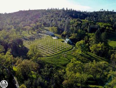 Groveland Single Family Home For Sale: 12221 Deer Creek Rd
