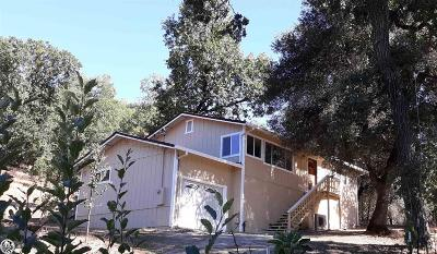 Sonora Single Family Home For Sale: 21181 Ridgeview Drive