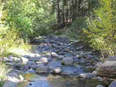 Tahoe City Single Family Home For Sale: 695 Ward Creek Blvd