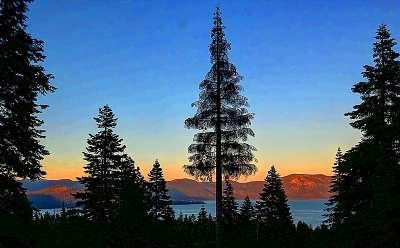Tahoe City, Tahoe Vista, Carnelian Bay Single Family Home For Sale: 4200 Beaumont Road