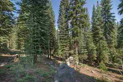 Residential Lots & Land For Sale: 12005 Skislope Way