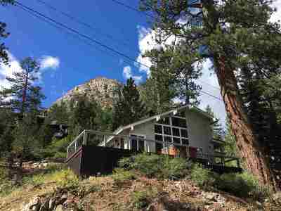 Truckee, Soda Springs, Carnelian Bay, Olympic Valley Single Family Home For Sale: 226 Granite Chief Road