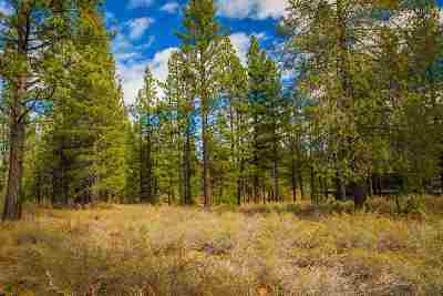 Residential Lots & Land For Sale: 8134 Lahontan Drive