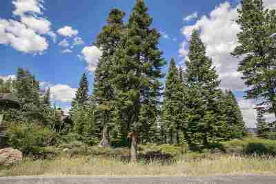 Residential Lots & Land For Sale: 381 Sierra Crest Trail