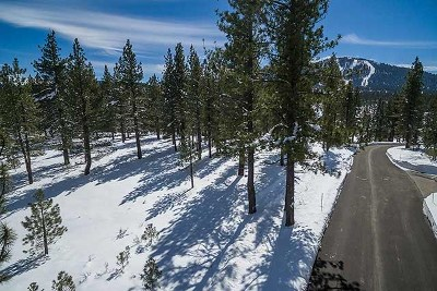 Residential Lots & Land For Sale: 7585 Lahontan Drive
