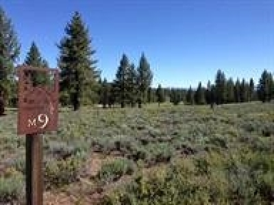 Residential Lots & Land For Sale: 11639 Henness Road