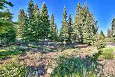 Residential Lots & Land For Sale: 14155 Skislope Way