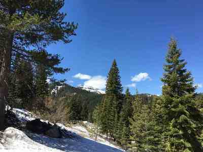 Residential Lots & Land For Sale: 201 Sierra Crest Trail