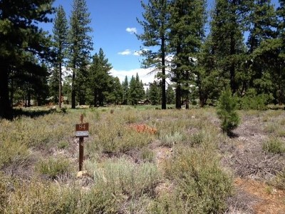 Residential Lots & Land For Sale: 12338 Caleb Drive
