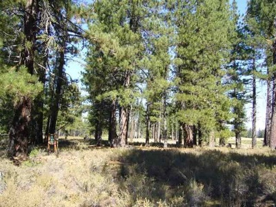 Residential Lots & Land For Sale: 12404 Caleb Drive