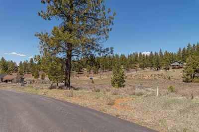 Residential Lots & Land For Sale: 16226 Lance Drive