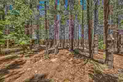 Residential Lots & Land For Sale: 14654 Davos Drive