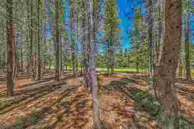 Residential Lots & Land For Sale: 14668 Davos Drive