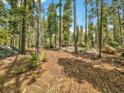 Residential Lots & Land For Sale: 21217 Castle Drive