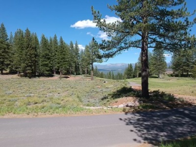 Residential Lots & Land For Sale: 10717 Carson Range Court