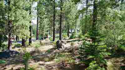Residential Lots & Land For Sale: 13204 Snowshoe Thompson