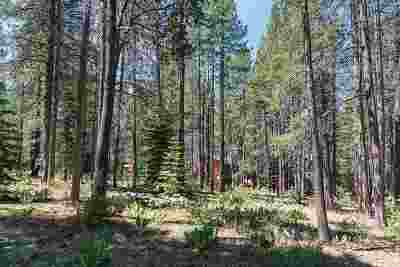 Residential Lots & Land For Sale: 11480 Lausanne Way