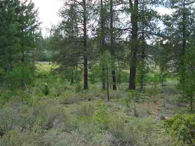 Residential Lots & Land For Sale: 13207 Snowshoe Thompson