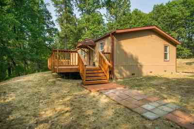 Single Family Home For Sale: 15299 You Win Court