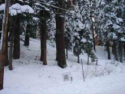 Residential Lots & Land For Sale: 11580 Skislope Way