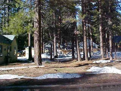 Residential Lots & Land For Sale: 8627 Trout Avenue