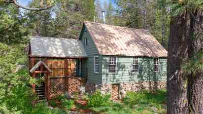 Truckee, Soda Springs, Carnelian Bay, Olympic Valley Single Family Home For Sale: 25 S Yuba Drive