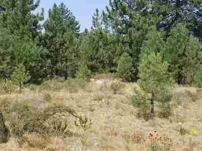 Residential Lots & Land For Sale: 11883 Old Mill Road
