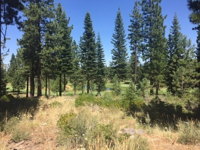 Residential Lots & Land For Sale: 9333 Heartwood Drive