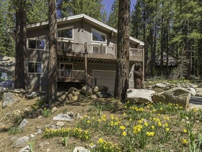 Single Family Home For Sale: 51068 Jeffery Pine Drive