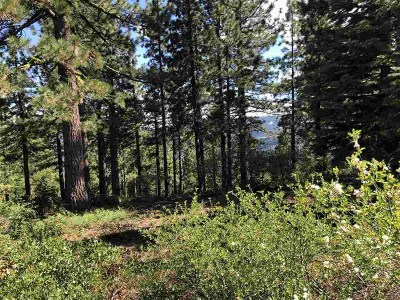 Residential Lots & Land For Sale: 11806 Skislope Way