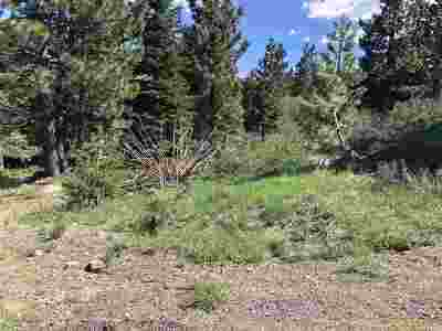 Residential Lots & Land For Sale: 11465 Snowpeak Way