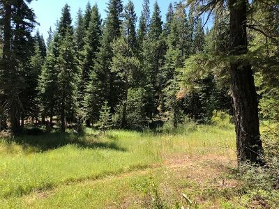 Residential Lots & Land For Sale: 17291 Northwoods Boulevard