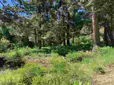 Residential Lots & Land For Sale: 16567 Skislope Way