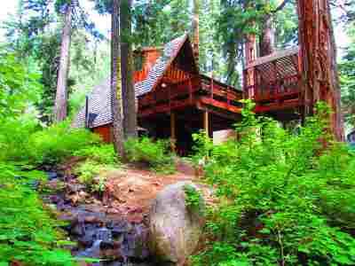 Tahoe City Single Family Home For Sale: 2555 Owl Lane