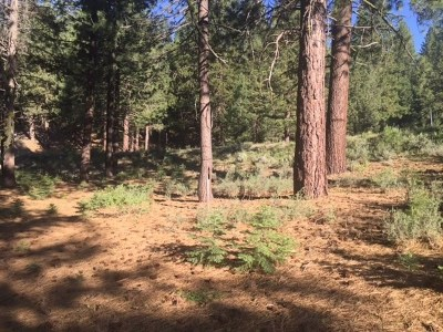Residential Lots & Land For Sale: 11301 China Camp Road