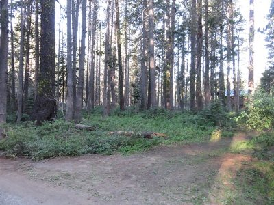 Residential Lots & Land For Sale: 10080 Bunny Hill Road